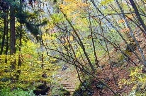 晩秋の御岳周辺のイメージ